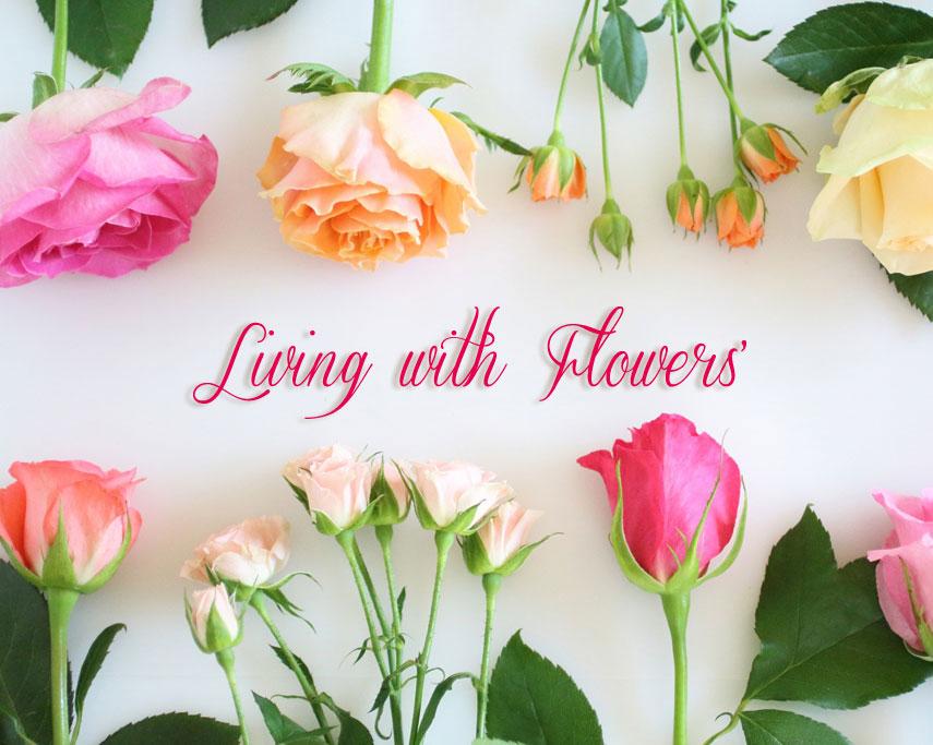 花のこんどう